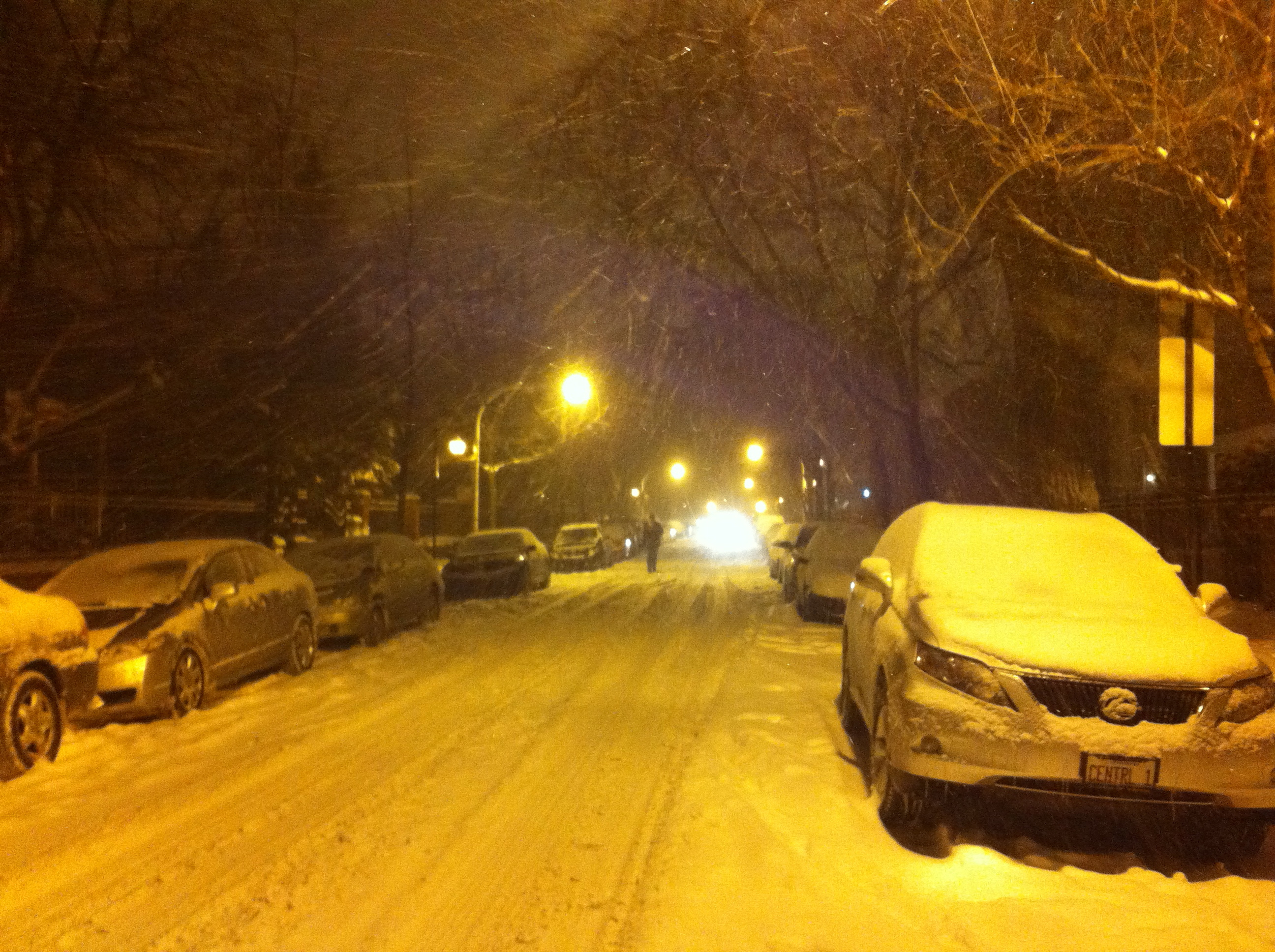 My street, snowed over