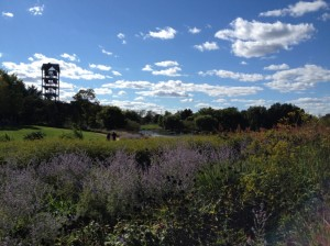 Chicago Botanic Garden's Evening Island carillion (bell tower of 23 bells)