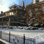 My neighborhood under snow